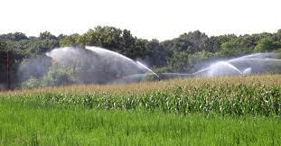 irrigated corn biking illinois havana historic water tower dentists corn