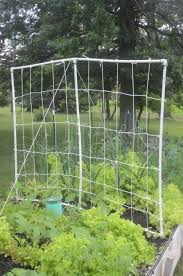 How To Grow Cucumbers On A Trellis Diy Pvc Trellis For Cucumbers Beans And Peas Raise Your Garden