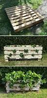 old wooden pallets are fantastic for garden diy projects they are