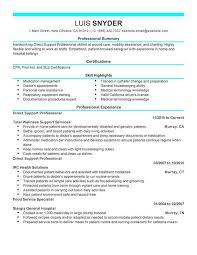 Nice Resumes Professional Resume Samples It