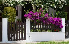 Backyard Fence Ideas Pictures 81 Fence Designs And Ideas Front Yard U0026 Backyard