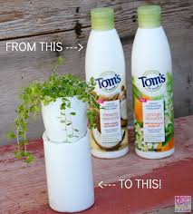 How To Make A Self Watering Planter by Upcycled Plastic Bottle Craft Self Watering Planters Mom Always