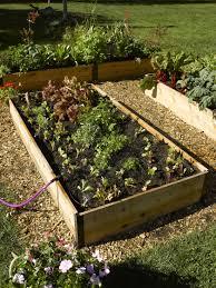 micro snip n spray garden sprinkler system gardeners com