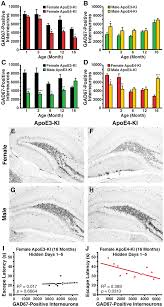 What Is Interneuron Gad67 Immunopositive Hilar Gabaergic Interneuron Numbers Change As