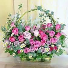 479 best roses images on pinterest flowers flower
