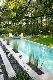 Natural Backyard Pools by Top 25 Best Swimming Pool Chlorine Ideas On Pinterest Natural