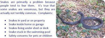 Snake In The Backyard by How To Get Rid Of Snakes In The House Or Yard