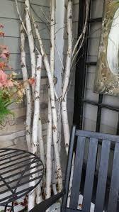 Mobel Fur Balkon 52 Ideen Wohnstil Birkenstamm Deko äste Aufstellen U2026 Pinteres U2026