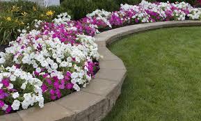 imagenes de jardines pequeños con flores ideas para arreglar el jardín en primavera vix