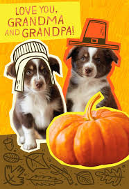 happy thanksgiving ecard pilgrim puppies thanksgiving card for grandparents greeting