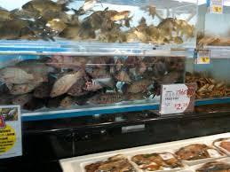 where do you buy fish and seafood markets houston chowhound