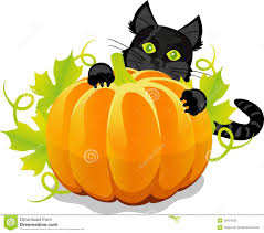 halloween cats background halloween pumpkin and black cat royalty free stock photo image