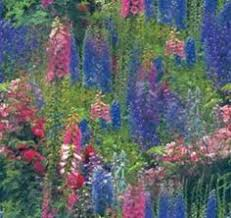 wildflower garden garden ideas pinterest english country