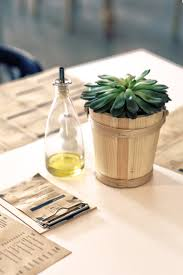 plant u0026 oil on the table free stock photo