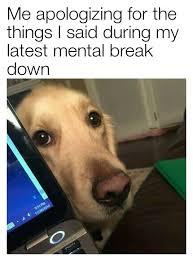 Doge Original Meme - doge meme origin tumblr