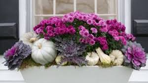top fall decorating ideas for your window boxes youtube