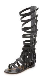 sam edelman gardenia tall gladiator sandals shopbop
