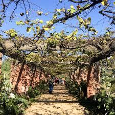 chicago botanic gardens wandeleur