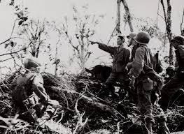 japanese american veterans association nisei legacy