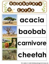 Tropical Savanna Dominant Plants - dominant plants in the african savanna savanna pinterest biomes
