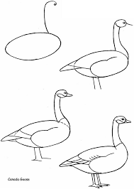 coloring fascinating draw geese step goose