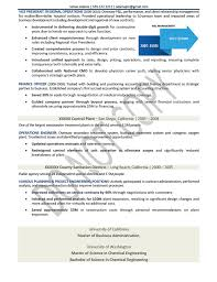 Sample Resume For Client Relationship Management by Ceo Chief Executive Officer Resume Samples Mary Elizabeth