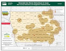 Iowa Road Conditions Map Emerald Ash Borer Found In Charles City U2013 Mix 107 3 Kiow