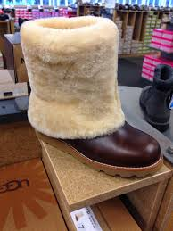 fashion herald dsw shoe of the week ugg australia boots