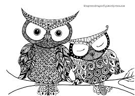 free owl coloring pages at children books online