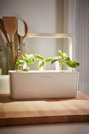 click and grow a miniature herb garden for a kitchen countertop