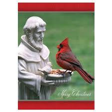 cardinal bird home decor st francis and the cardinal card shop nwf