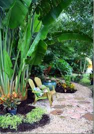 Tropical Landscaping Ideas by Best 25 Florida Landscaping Ideas On Pinterest White