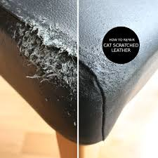 How To Repair Scratched Leather Sofa How To Repair Cat Scratched Leather In Two Steps Yes Pinteres