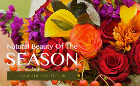 san diego florist san diego florist flower delivery by timeless blossoms