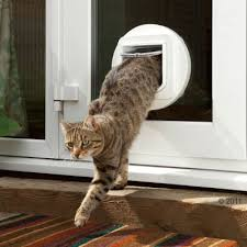 putting cat flap in glass door sureflap microchip cat flap great deals at zooplus ie