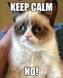 Calm Meme - keep calm no cat meme cat planet cat planet