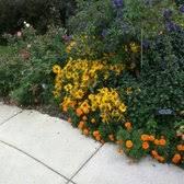 Mn Landscape Arboretum by University Of Minnesota Landscape Arboretum 210 Photos U0026 59
