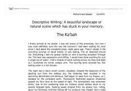 short essay example