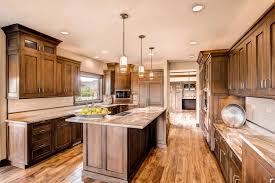 love the rich brown cabinets not too dark and the cabinet design