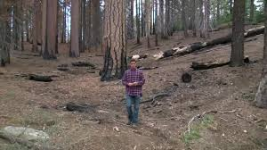 Wild Fires Near Merritt by 23abc Tours The 2015 Rough Wild Fire In Kings Canyon National Park