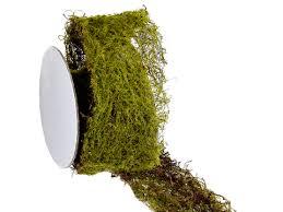 moss ribbon artificial moss ribbon in green moss ribbon same day