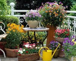 Flowers For Backyard by 2015 Flowers For Terrace Garden Terrace Garden Flower 20429616 28