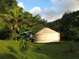 Sea Cliff Cottages Dominica by Where To Stay Dominica Hotels Guest Houses Cottages Cabins