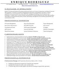 How To Make Professional Resume How To Make Your Resume Look Good Free Resume Example And