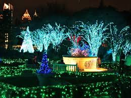 atlanta botanical garden lights your guide to dazzling holiday lights around atlanta atlanta