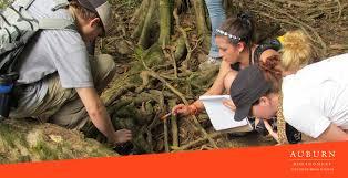 Environmental Scientists And Specialists Bureau Environmental Science Aum