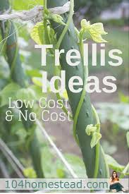 low cost no cost garden trellis ideas trellises serve an important function in the garden they can be completely utilitarian or they