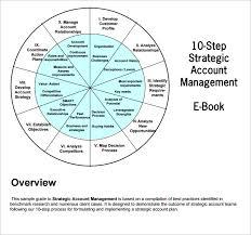 strategic account plan template 7 free word pdf documents