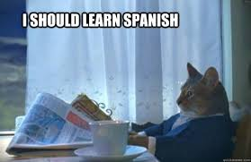 Spanish Memes - how to learn spanish vocabulary with reddit memes and more