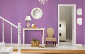 decorative coating interior for walls water based brushing